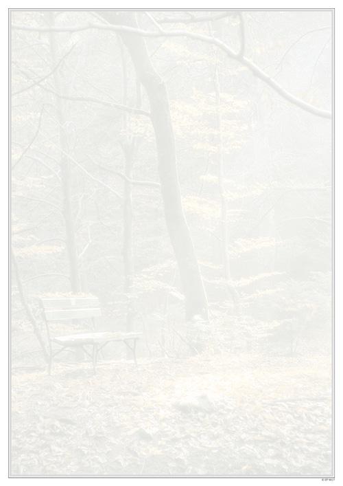 EP 9027 - Bank im Wald